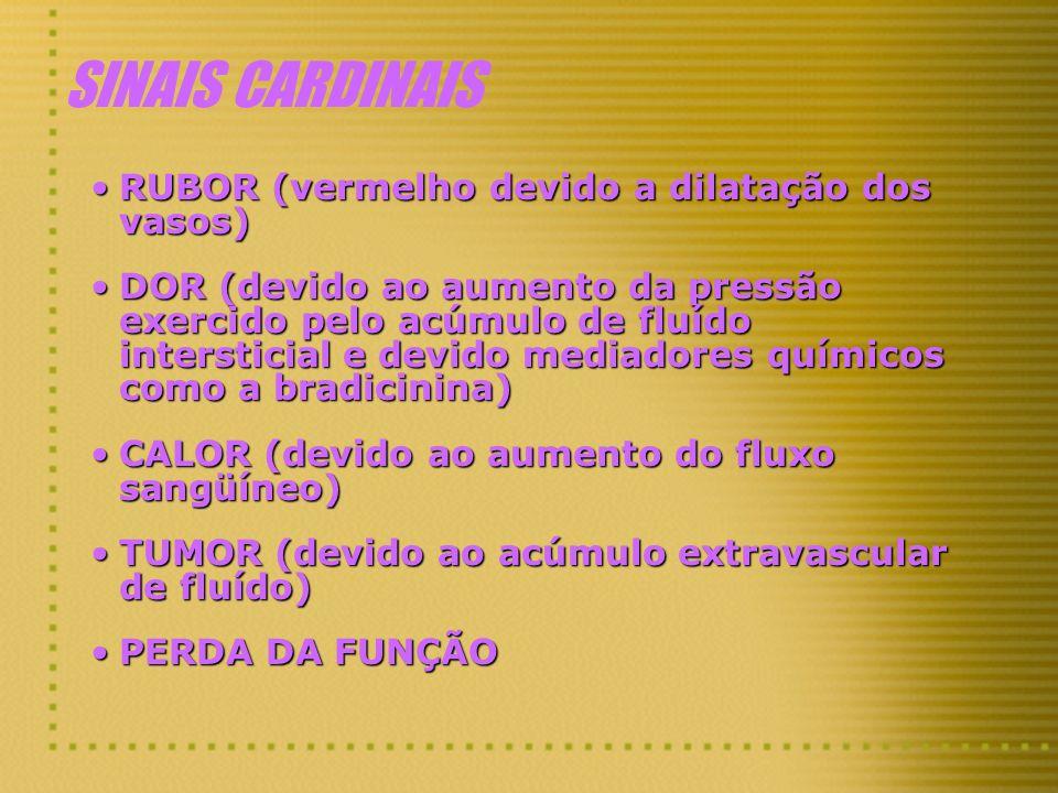 SINAIS CARDINAIS RUBOR (vermelho devido a dilatação dos vasos)RUBOR (vermelho devido a dilatação dos vasos) DOR (devido ao aumento da pressão exercido