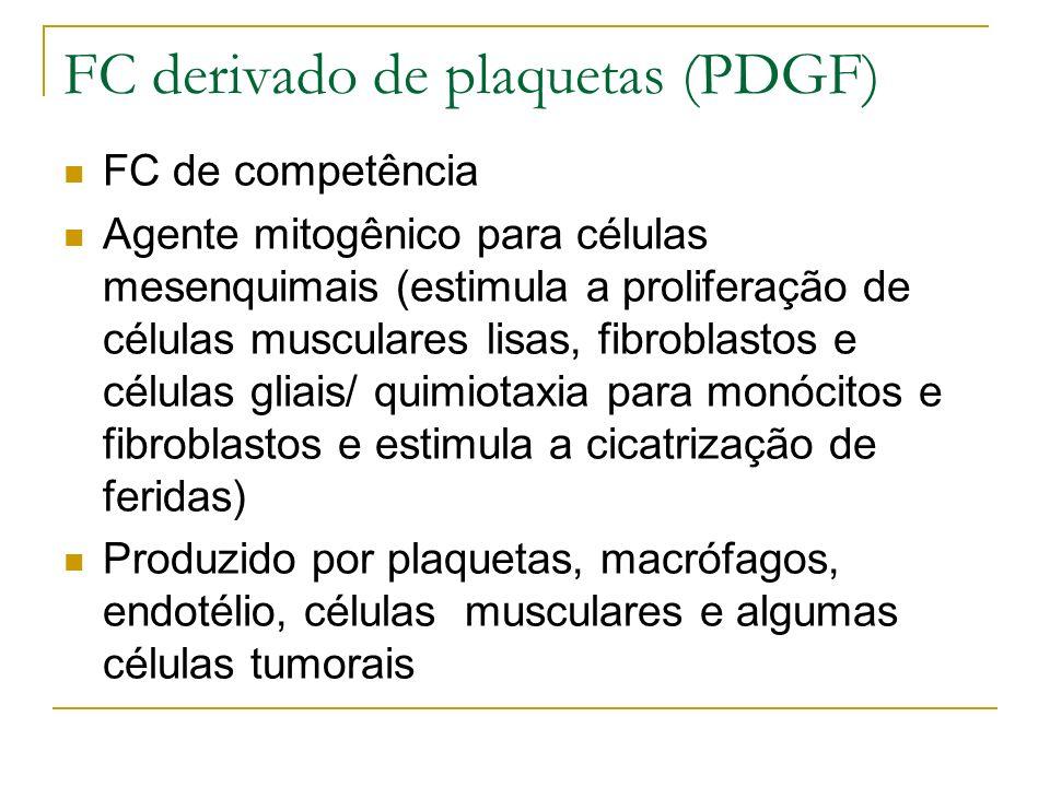 FC derivado de plaquetas (PDGF) FC de competência Agente mitogênico para células mesenquimais (estimula a proliferação de células musculares lisas, fibroblastos e células gliais/ quimiotaxia para monócitos e fibroblastos e estimula a cicatrização de feridas) Produzido por plaquetas, macrófagos, endotélio, células musculares e algumas células tumorais