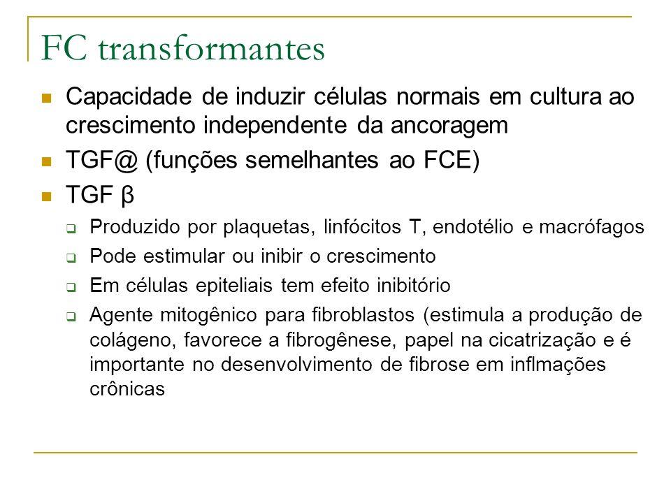 FC transformantes Capacidade de induzir células normais em cultura ao crescimento independente da ancoragem TGF@ (funções semelhantes ao FCE) TGF β Produzido por plaquetas, linfócitos T, endotélio e macrófagos Pode estimular ou inibir o crescimento Em células epiteliais tem efeito inibitório Agente mitogênico para fibroblastos (estimula a produção de colágeno, favorece a fibrogênese, papel na cicatrização e é importante no desenvolvimento de fibrose em inflmações crônicas