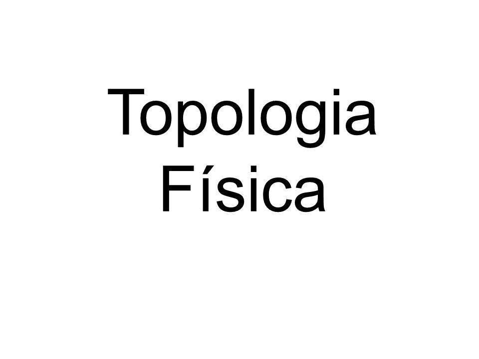 Topologia Física