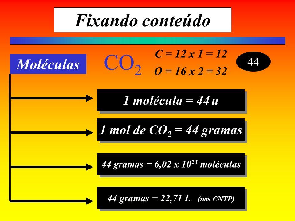 C = 12 x 1 = 12 O = 16 x 2 = 32 44 CO 2 Moléculas 1 molécula = 44u 1 mol de CO 2 = 44 gramas 44 gramas = 6,02 x 10 23 moléculas 44 gramas = 22,71 L (n