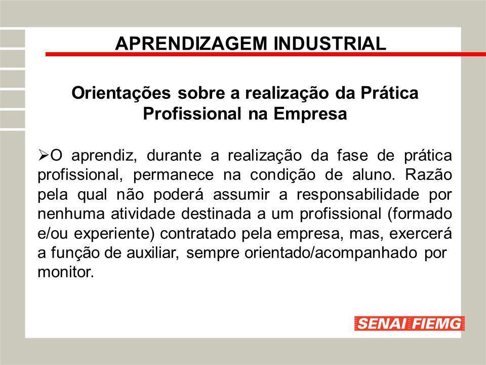 APRENDIZAGEM INDUSTRIAL Orientações sobre a realização da Prática Profissional na Empresa O aprendiz, durante a realização da fase de prática profissi