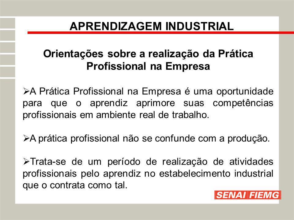 APRENDIZAGEM INDUSTRIAL Orientações sobre a realização da Prática Profissional na Empresa A Prática Profissional na Empresa é uma oportunidade para qu