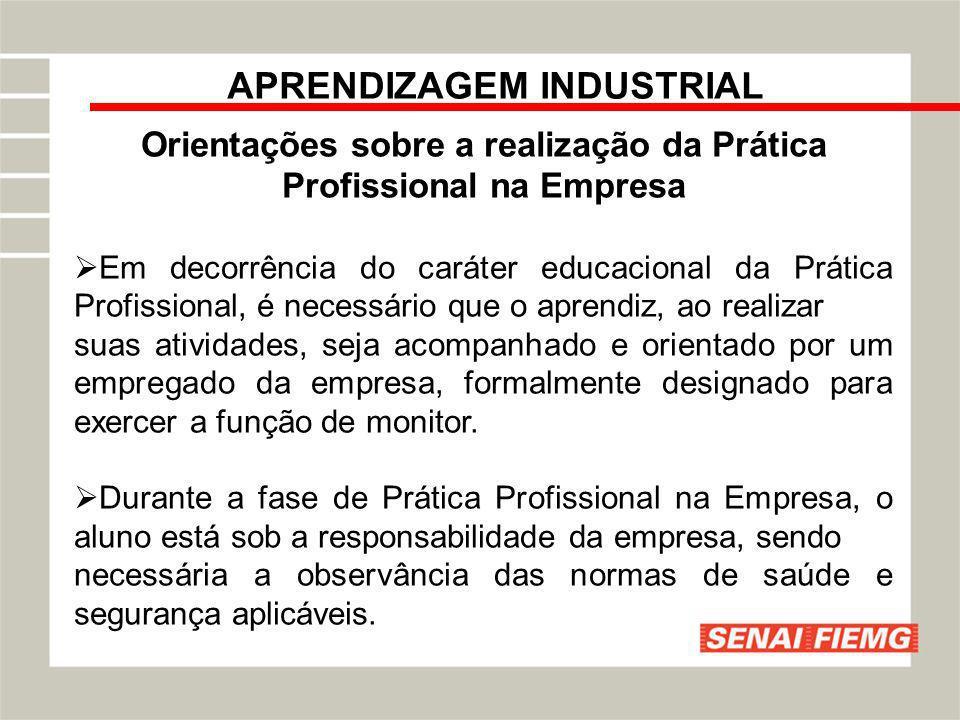 APRENDIZAGEM INDUSTRIAL Orientações sobre a realização da Prática Profissional na Empresa Em decorrência do caráter educacional da Prática Profissiona