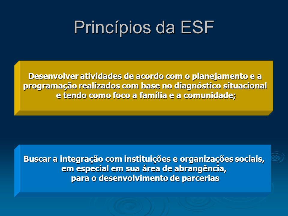 Princípios da ESF Desenvolver atividades de acordo com o planejamento e a programação realizados com base no diagnóstico situacional e tendo como foco
