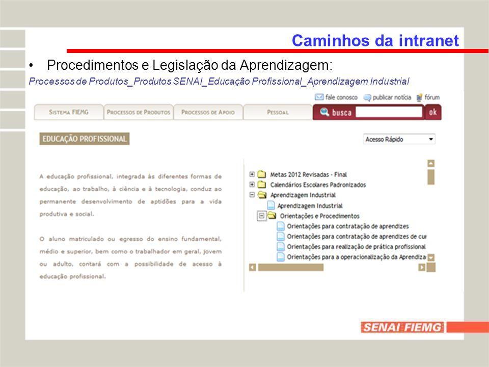 Procedimentos e Legislação da Aprendizagem: Processos de Produtos_Produtos SENAI_Educação Profissional_Aprendizagem Industrial Caminhos da intranet