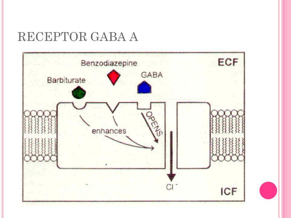 Á CIDO V ALPRÓICO Valproato: eficaz nas crises de ausência, mioclônicas, parciais e tônico clônicas (dose diária inicial é 15mg/kg e dose máxima é 60 mg/kg) Mecanismo de ação: inibe canal de sódio; provável mecanismo de aumentar quantidade de GABA (inibe degradação, aumentando a quantidade na fenda sináptica – inibe GABA transaminase)) Efeitos adversos: gastrintestinais (anorexia, náuseas e vômitos), sedação, tremor, ataxia; efeitos sobre a função hepática.