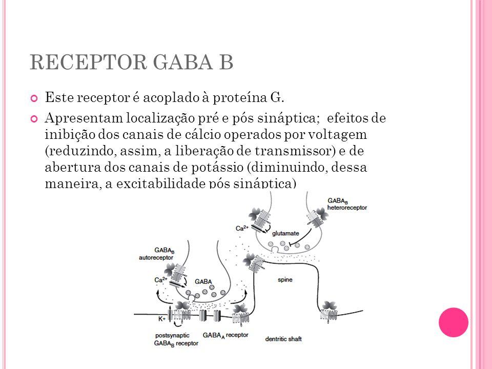 RECEPTOR GABA B Este receptor é acoplado à proteína G. Apresentam localização pré e pós sináptica; efeitos de inibição dos canais de cálcio operados p