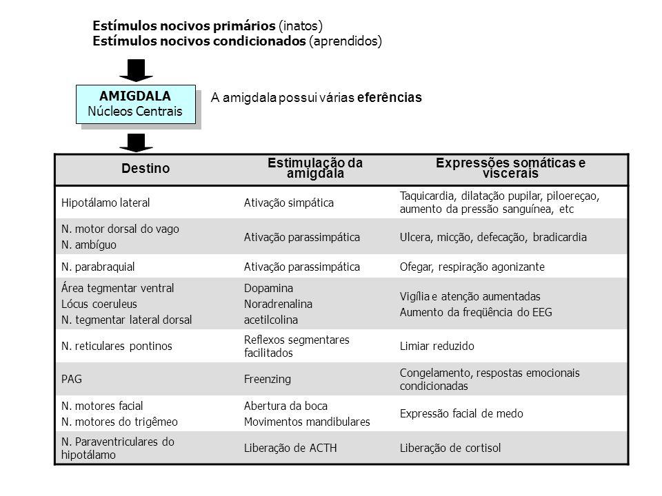 AMIGDALA Núcleos Centrais AMIGDALA Núcleos Centrais Estímulos nocivos primários (inatos) Estímulos nocivos condicionados (aprendidos) Destino Estimula