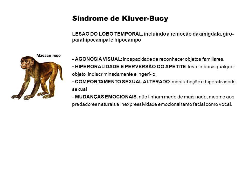 Síndrome de Kluver-Bucy LESAO DO LOBO TEMPORAL, incluindo a remoção da amigdala, giro- parahipocampal e hipocampo - AGONOSIA VISUAL: incapacidade de r