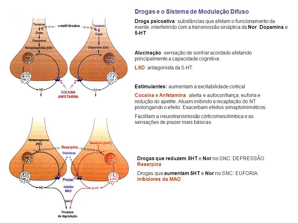 Drogas e o Sistema de Modulação Difuso Droga psicoativa: substâncias que afetam o funcionamento da mente, interferindo com a transmissão sináptica da