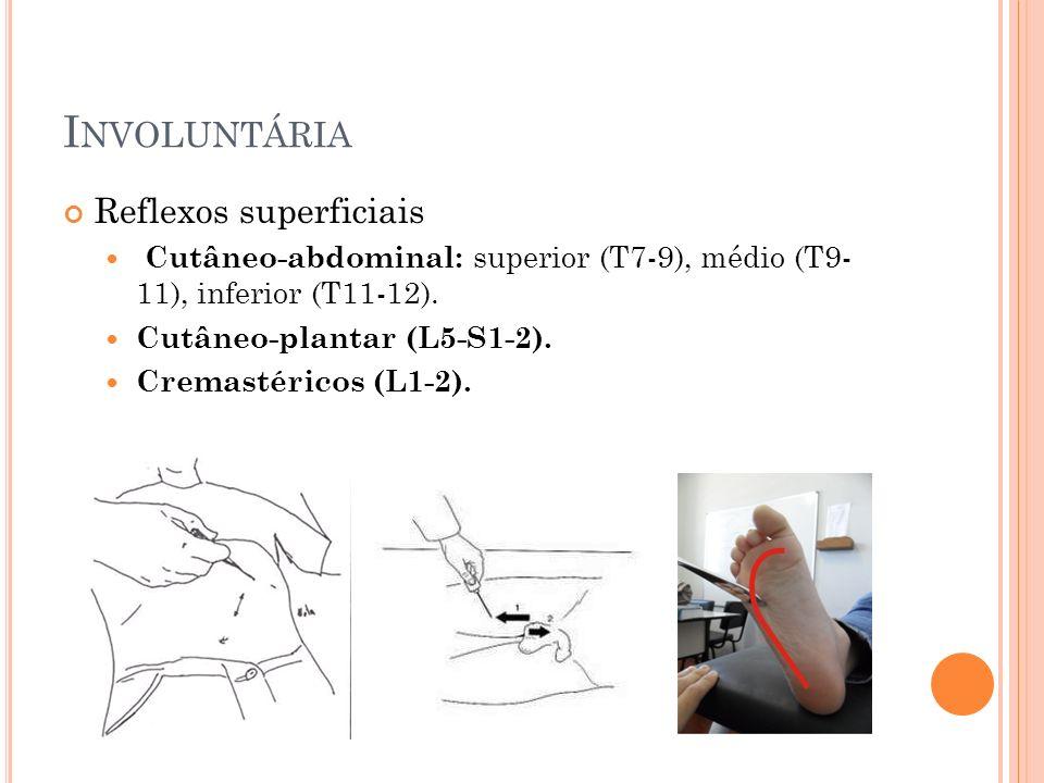 I NVOLUNTÁRIA Reflexos superficiais Cutâneo-abdominal: superior (T7-9), médio (T9- 11), inferior (T11-12). Cutâneo-plantar (L5-S1-2). Cremastéricos (L