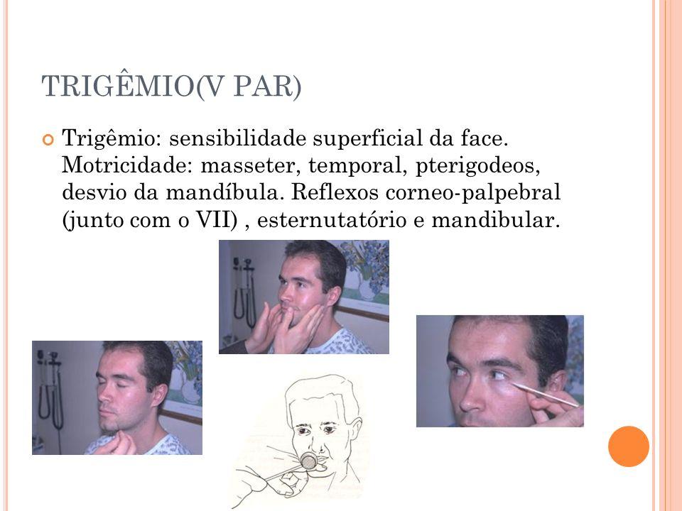 TRIGÊMIO(V PAR) Trigêmio: sensibilidade superficial da face. Motricidade: masseter, temporal, pterigodeos, desvio da mandíbula. Reflexos corneo-palpeb