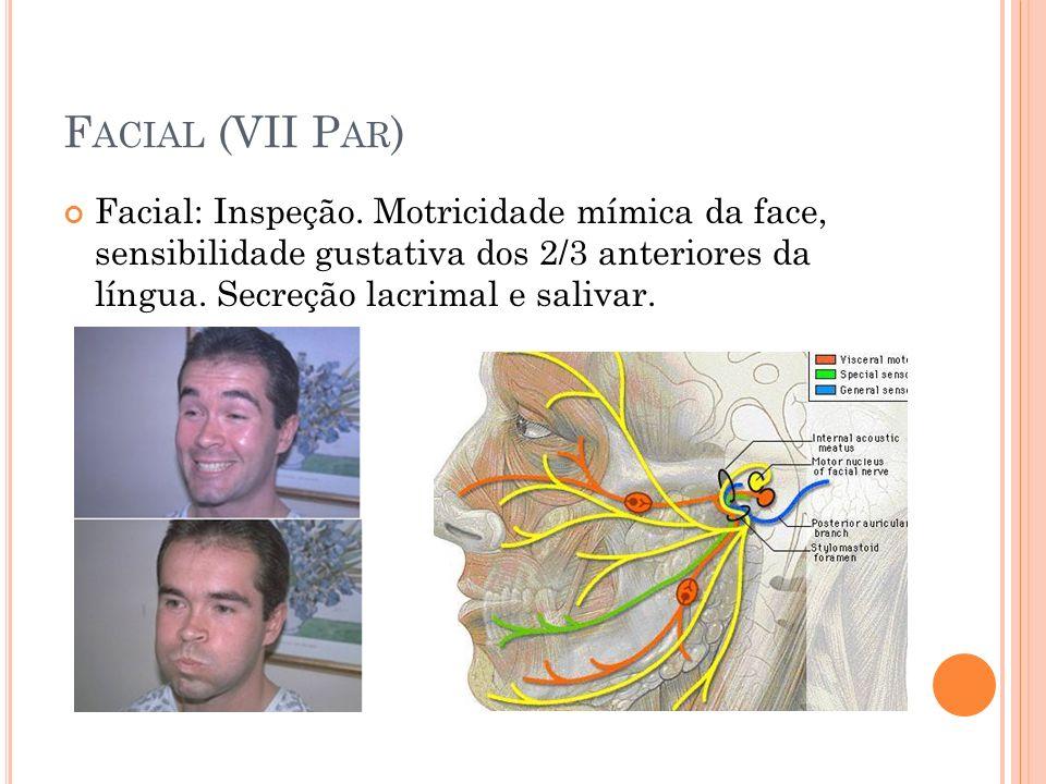 F ACIAL (VII P AR ) Facial: Inspeção. Motricidade mímica da face, sensibilidade gustativa dos 2/3 anteriores da língua. Secreção lacrimal e salivar.