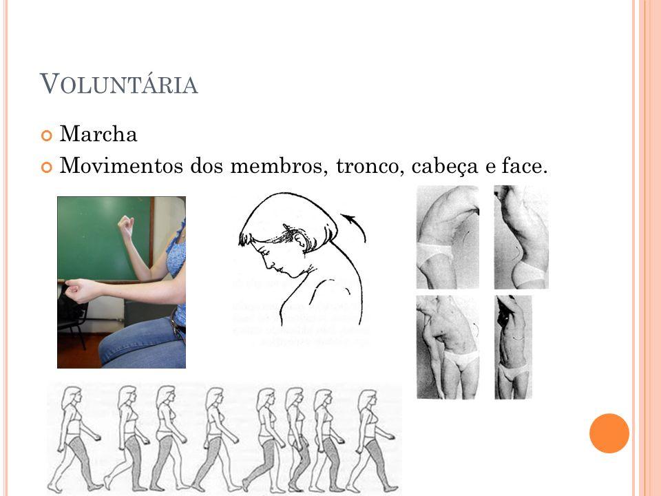 V OLUNTÁRIA Marcha Movimentos dos membros, tronco, cabeça e face.