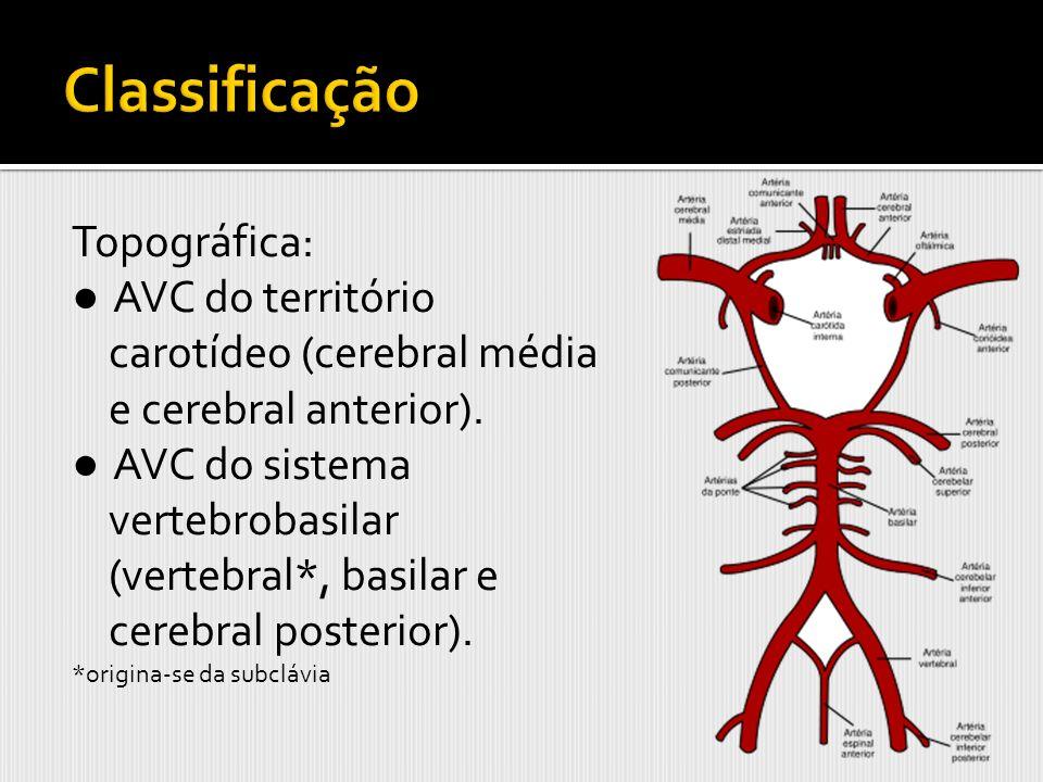 Topográfica: AVC do território carotídeo (cerebral média e cerebral anterior). AVC do sistema vertebrobasilar (vertebral*, basilar e cerebral posterio