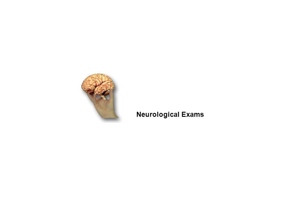 Neurological Exams