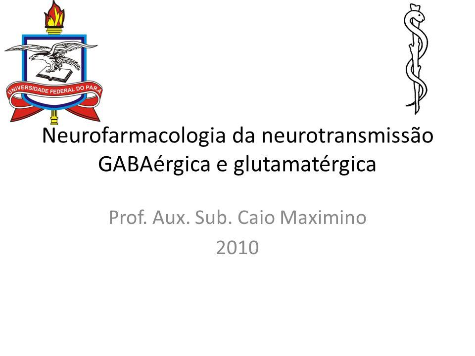 Neurofarmacologia da neurotransmissão GABAérgica e glutamatérgica Prof. Aux. Sub. Caio Maximino 2010