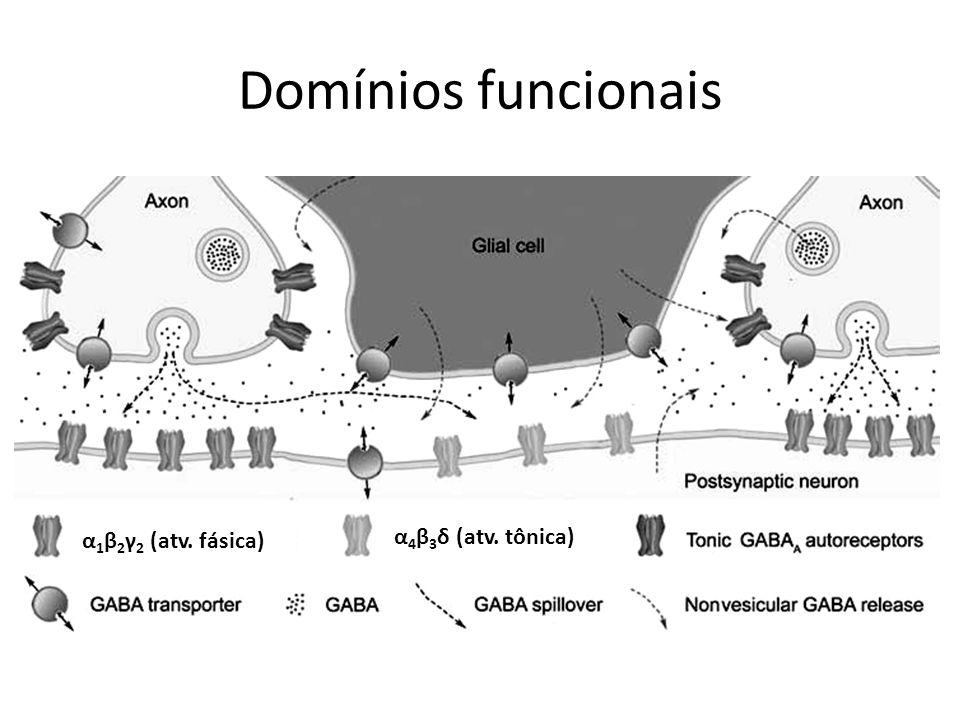 Domínios funcionais α 4 β 3 δ (atv. tônica) α 1 β 2 γ 2 (atv. fásica)