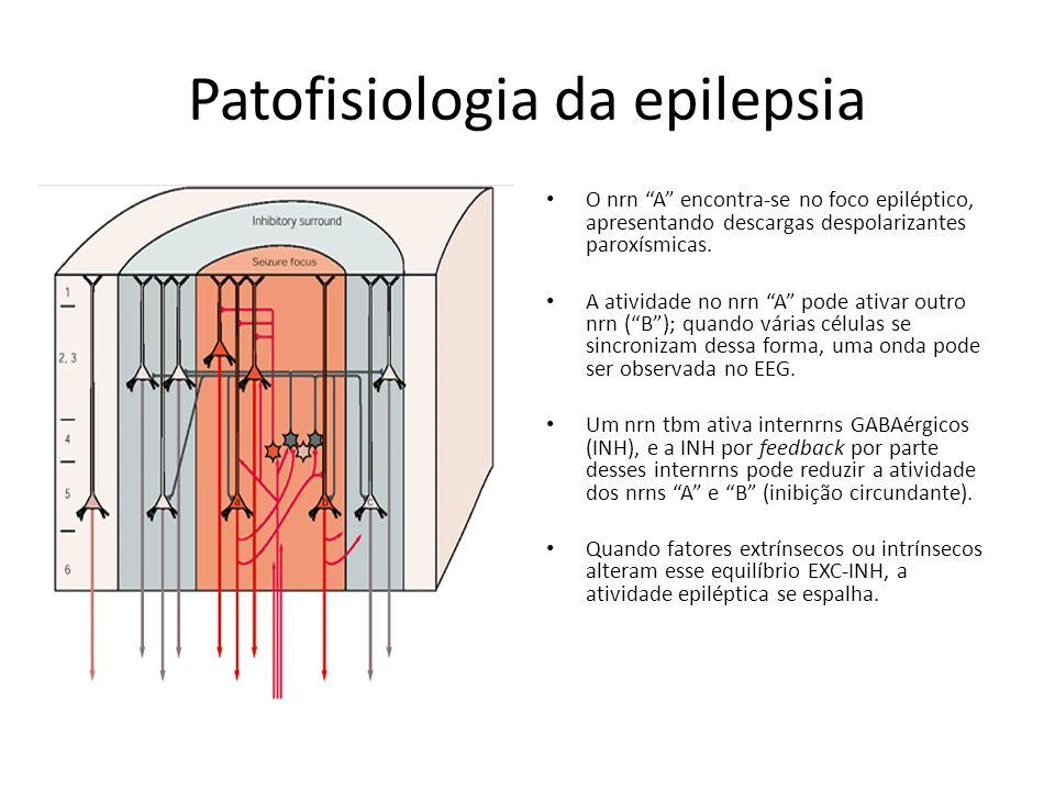 Patofisiologia da epilepsia O nrn A encontra-se no foco epiléptico, apresentando descargas despolarizantes paroxísmicas. A atividade no nrn A pode ati