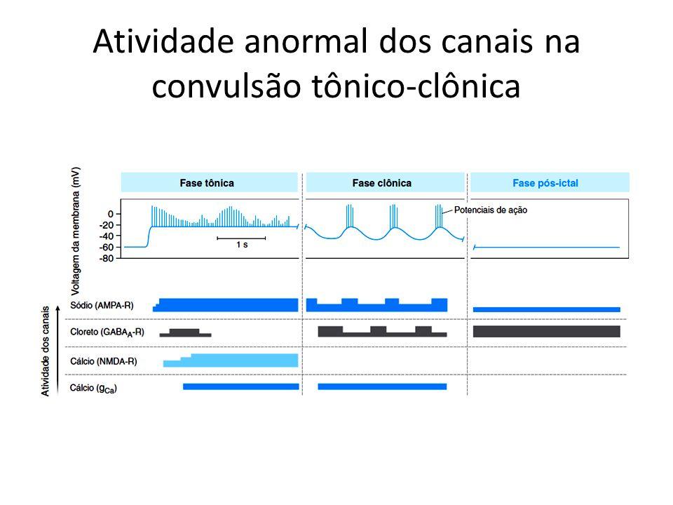 Atividade anormal dos canais na convulsão tônico-clônica