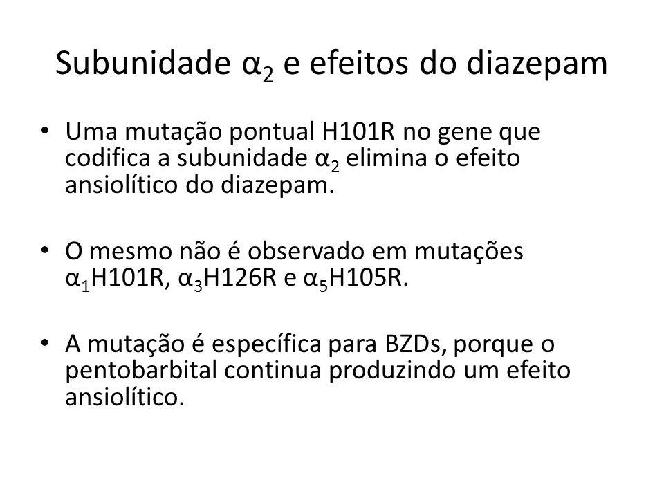 Subunidade α 2 e efeitos do diazepam Uma mutação pontual H101R no gene que codifica a subunidade α 2 elimina o efeito ansiolítico do diazepam. O mesmo