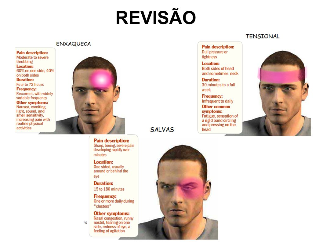 REVISÃOREVISÃO