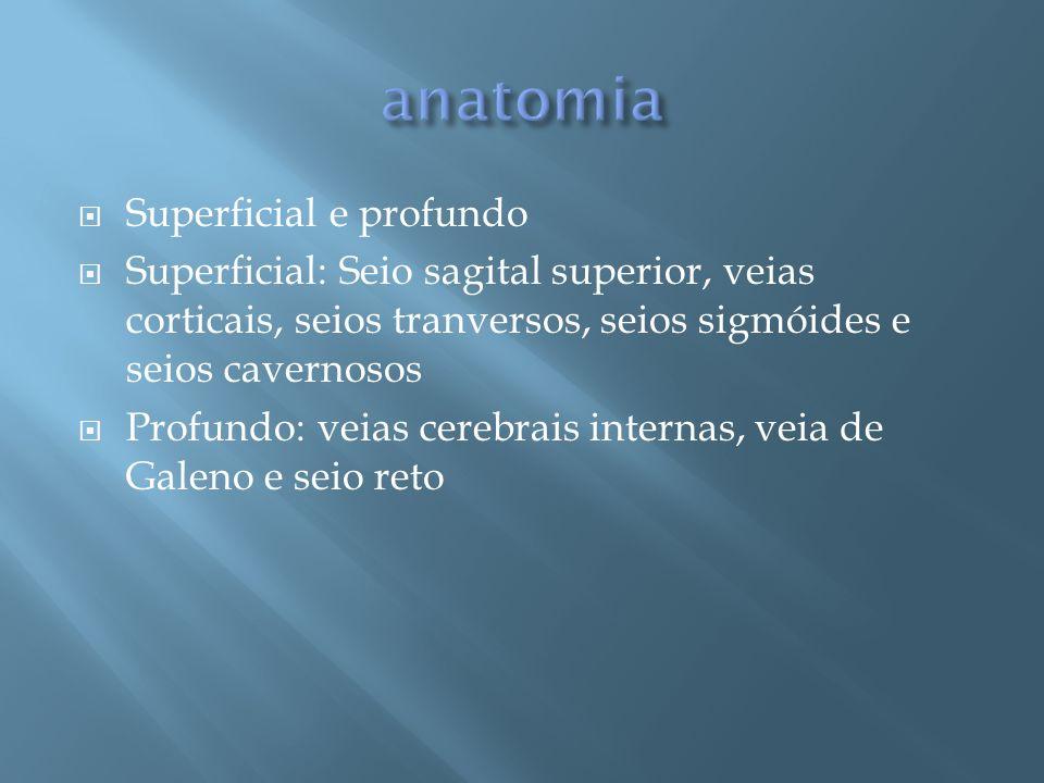 Superficial e profundo Superficial: Seio sagital superior, veias corticais, seios tranversos, seios sigmóides e seios cavernosos Profundo: veias cereb