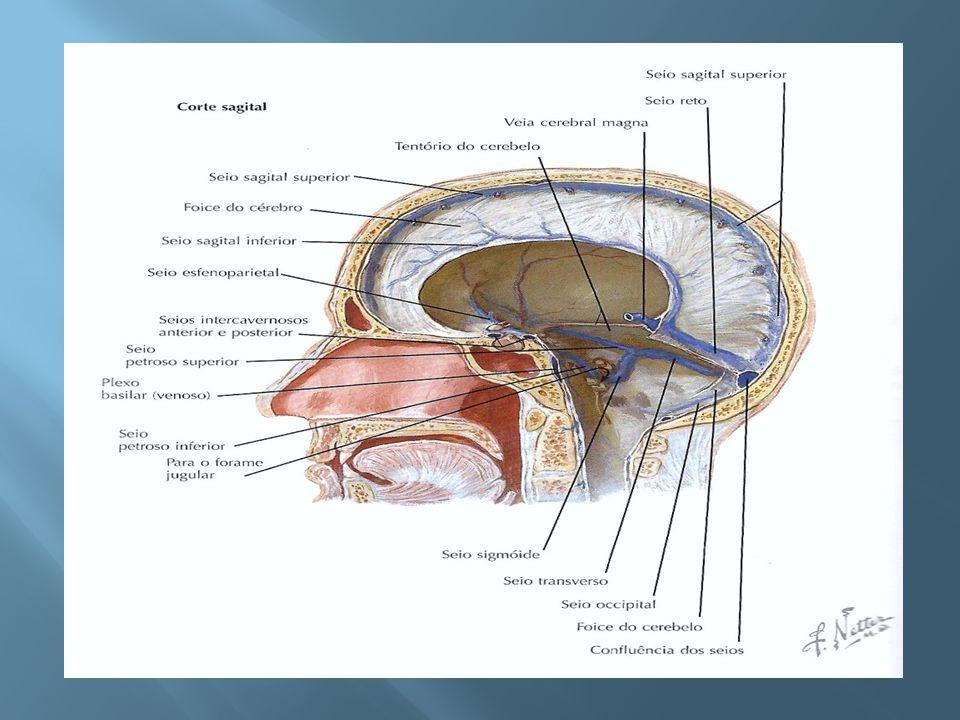 Durante 36 meses de seguimento, houve 10 episódios de trombose do seio recorrente e 13 de trombos venosos envolvendo a veia profunda dos membros inferiores ou artérias pulmonares; Apenas 2 pacientes tiveram mais de 1 recorrência 9 dos eventos recorrentes ocorreram durante a terapia de warfarina Após 8 anos de seguimento, não houve impacto da warfarina na sobrevida livre de recidiva Neurology,vol67,number5,2006.