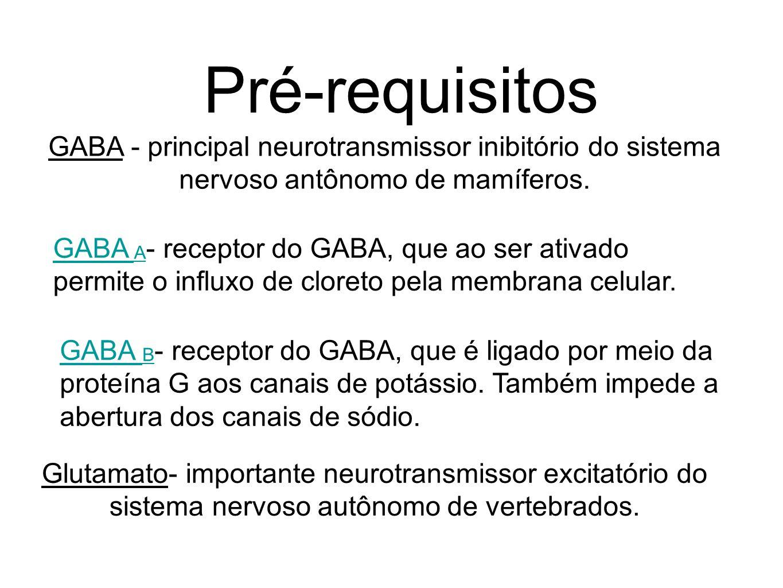 GABA - principal neurotransmissor inibitório do sistema nervoso antônomo de mamíferos. Pré-requisitos GABA A GABA A - receptor do GABA, que ao ser ati