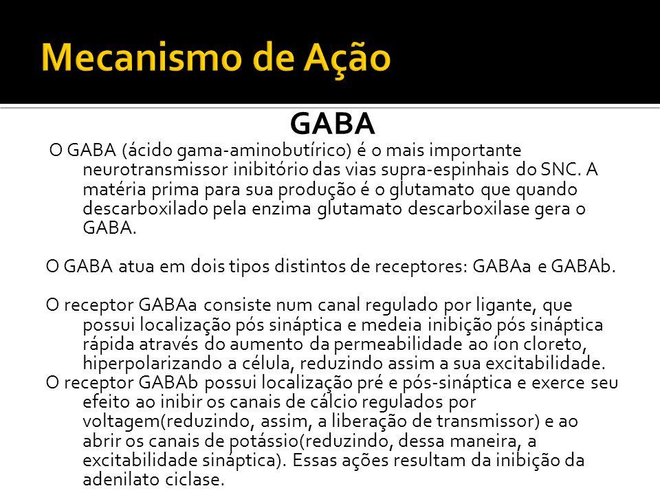 GABA O GABA (ácido gama-aminobutírico) é o mais importante neurotransmissor inibitório das vias supra-espinhais do SNC. A matéria prima para sua produ