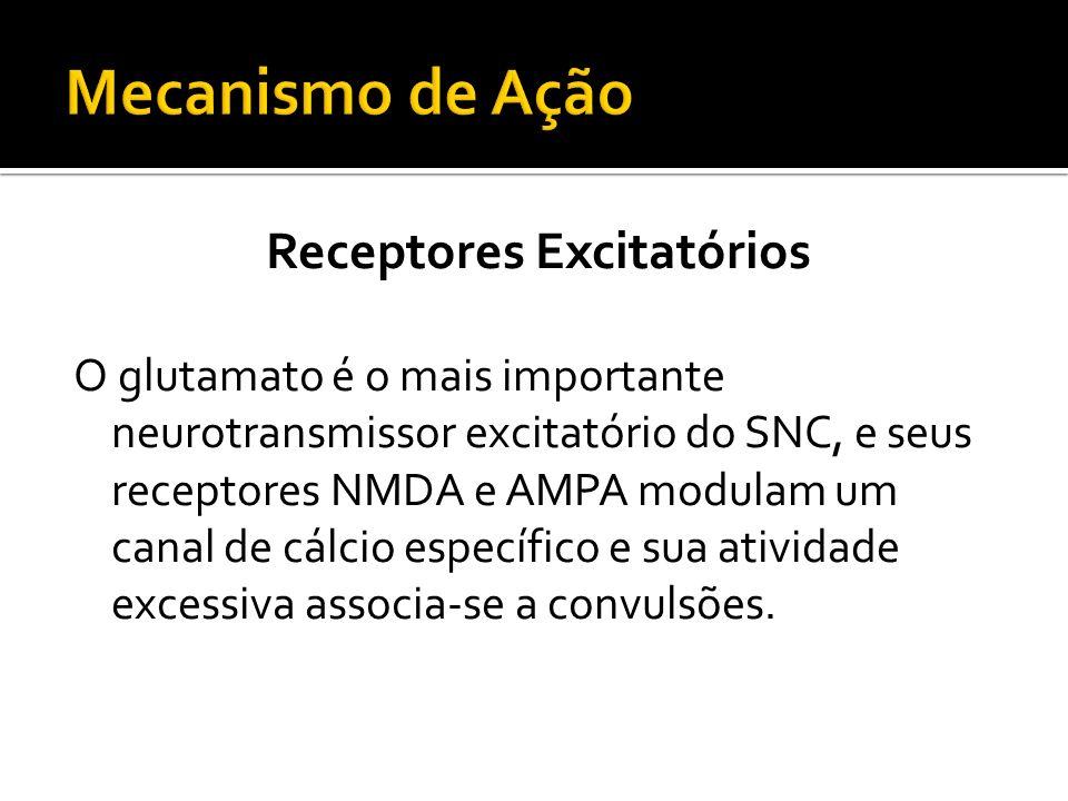 Receptores Excitatórios O glutamato é o mais importante neurotransmissor excitatório do SNC, e seus receptores NMDA e AMPA modulam um canal de cálcio
