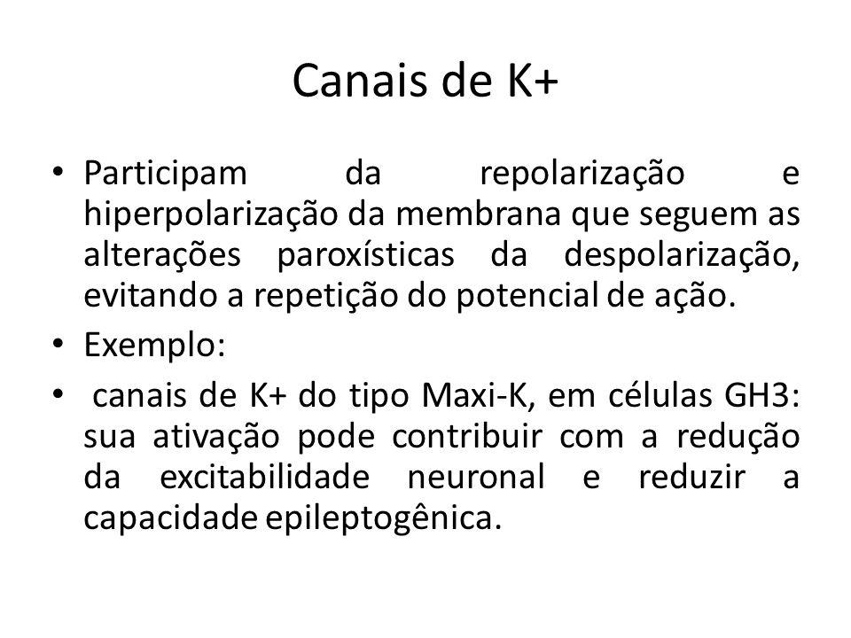 Canais de K+ Participam da repolarização e hiperpolarização da membrana que seguem as alterações paroxísticas da despolarização, evitando a repetição