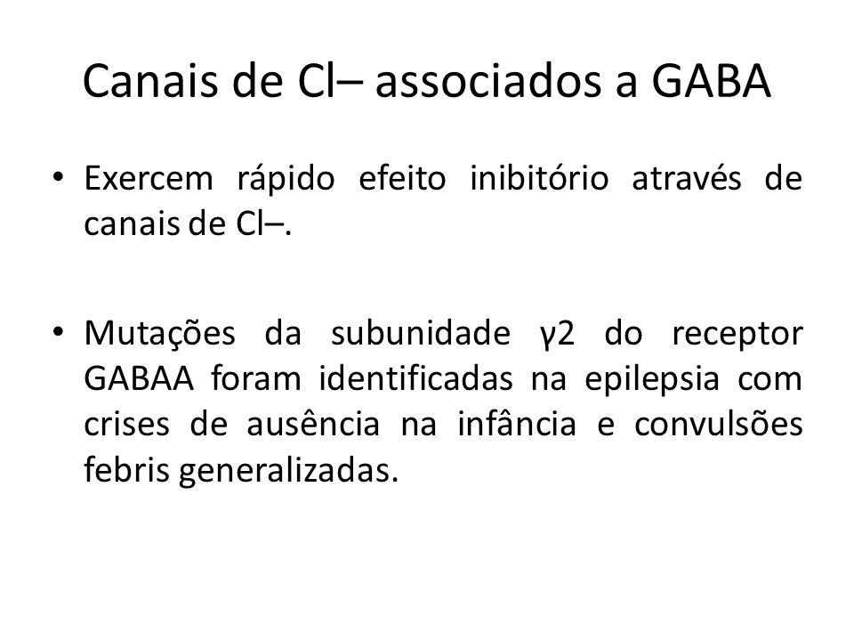 Canais de Cl– associados a GABA Exercem rápido efeito inibitório através de canais de Cl–. Mutações da subunidade γ2 do receptor GABAA foram identific