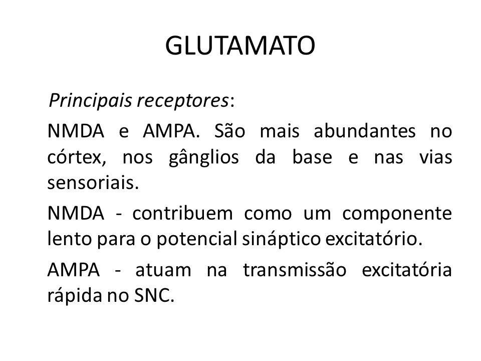 GLUTAMATO Principais receptores: NMDA e AMPA. São mais abundantes no córtex, nos gânglios da base e nas vias sensoriais. NMDA - contribuem como um com