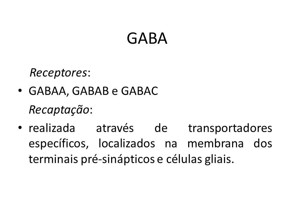 GABA Receptores: GABAA, GABAB e GABAC Recaptação: realizada através de transportadores específicos, localizados na membrana dos terminais pré-sináptic