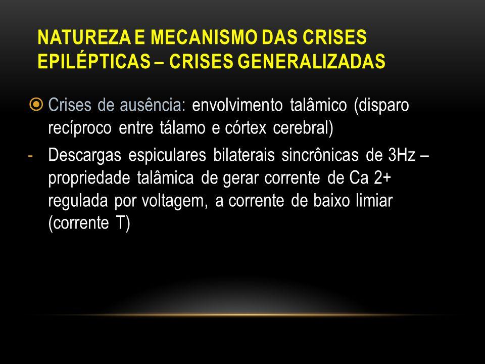 NATUREZA E MECANISMO DAS CRISES EPILÉPTICAS – CRISES GENERALIZADAS Crises de ausência: envolvimento talâmico (disparo recíproco entre tálamo e córtex