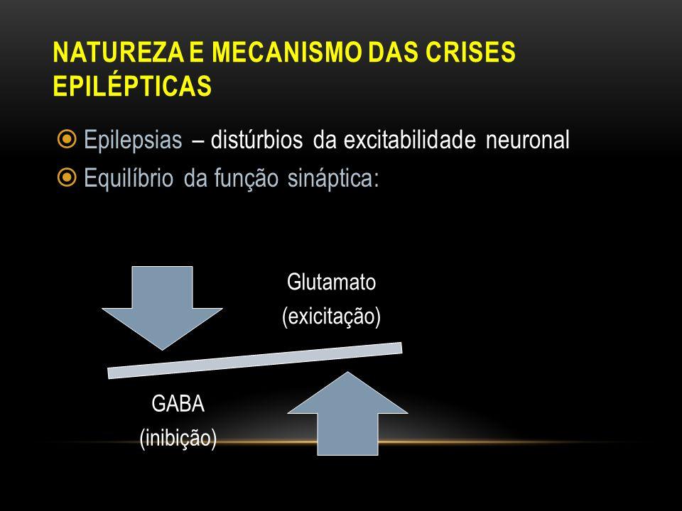 NATUREZA E MECANISMO DAS CRISES EPILÉPTICAS Epilepsias – distúrbios da excitabilidade neuronal Equilíbrio da função sináptica: Glutamato (exicitação)