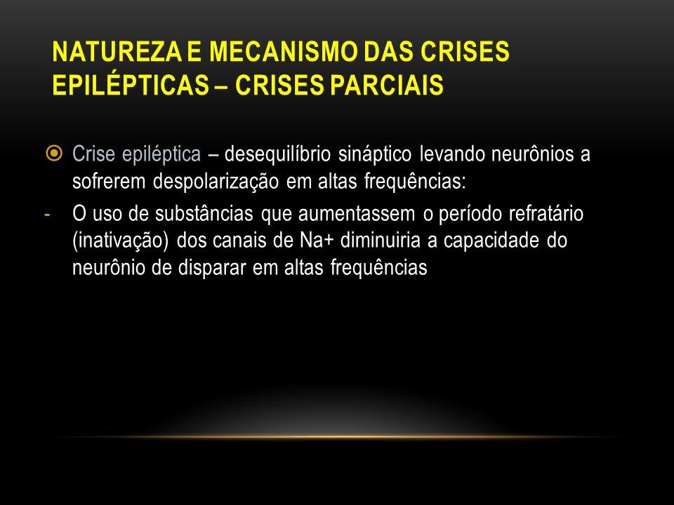 NATUREZA E MECANISMO DAS CRISES EPILÉPTICAS – CRISES PARCIAIS Crise epiléptica – desequilíbrio sináptico levando neurônios a sofrerem despolarização e