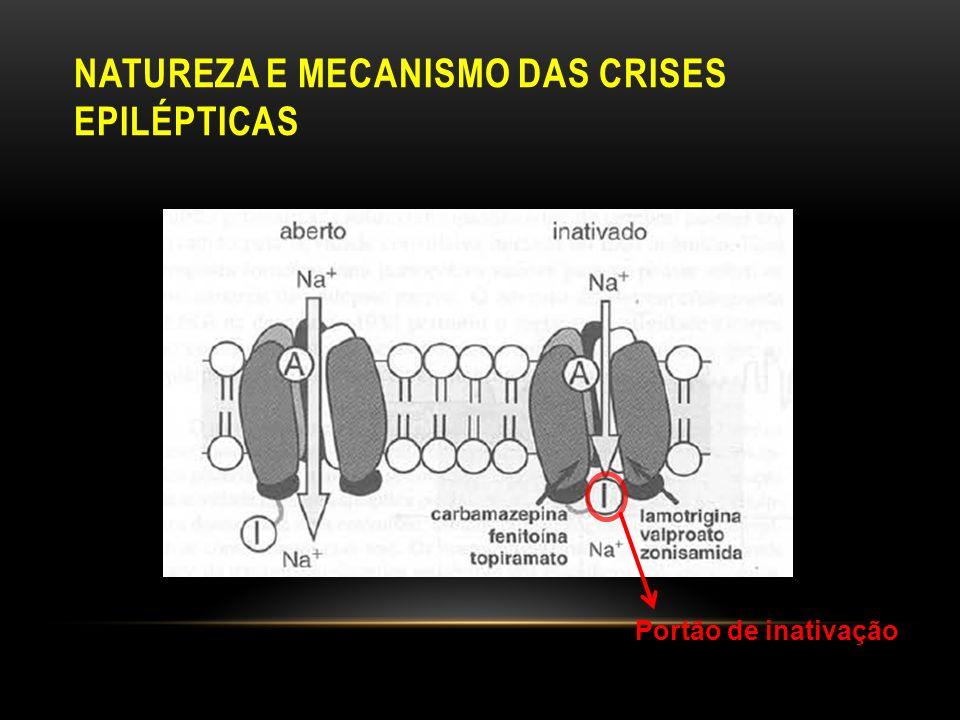 NATUREZA E MECANISMO DAS CRISES EPILÉPTICAS Portão de inativação