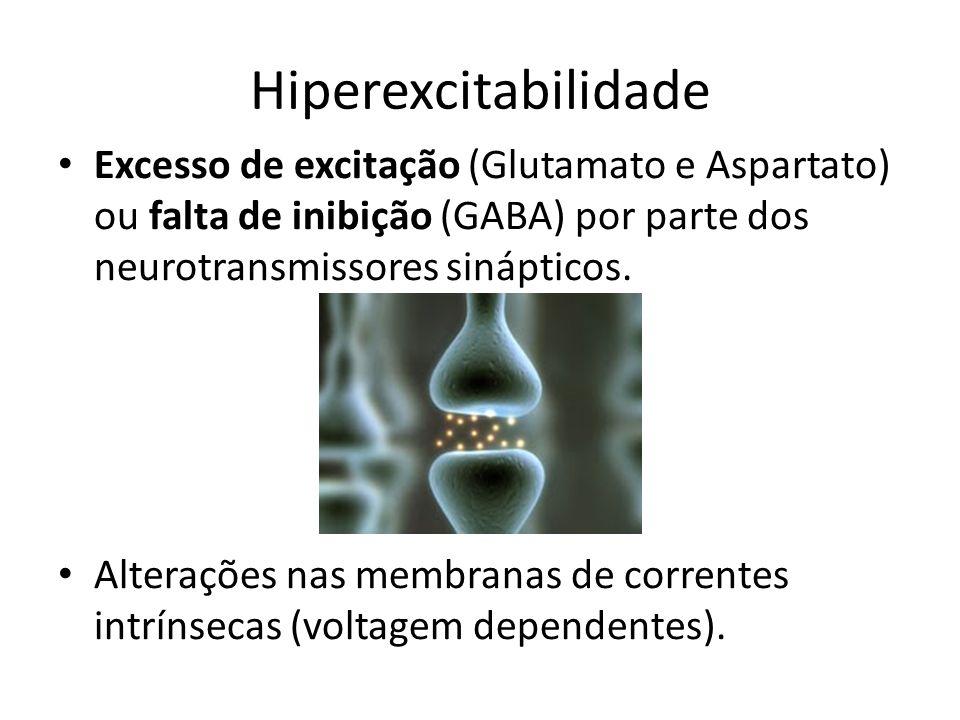 Hiperexcitabilidade Excesso de excitação (Glutamato e Aspartato) ou falta de inibição (GABA) por parte dos neurotransmissores sinápticos. Alterações n