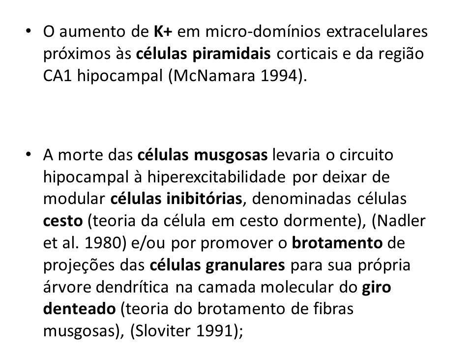 O aumento de K+ em micro-domínios extracelulares próximos às células piramidais corticais e da região CA1 hipocampal (McNamara 1994). A morte das célu