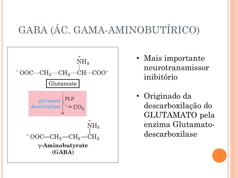GABA (ÁC. GAMA-AMINOBUTÍRICO) Mais importante neurotransmissor inibitório Originado da descarboxilação do GLUTAMATO pela enzima Glutamato- descarboxil