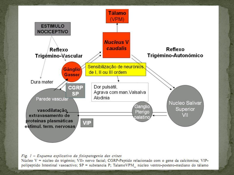 Analgésicos (dipirona, paracetamol), evitar uso por mais de 3x/semana.
