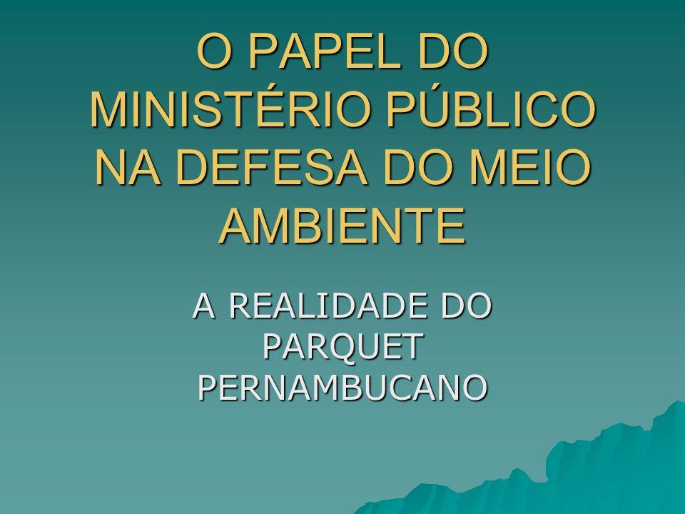 O PAPEL DO MINISTÉRIO PÚBLICO NA DEFESA DO MEIO AMBIENTE A REALIDADE DO PARQUET PERNAMBUCANO