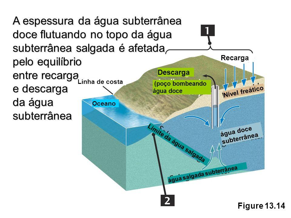 Figure 13.14 A espessura da água subterrânea doce flutuando no topo da água subterrâneasalgada é afetada pelo equilíbrio A espessura da água subterrân