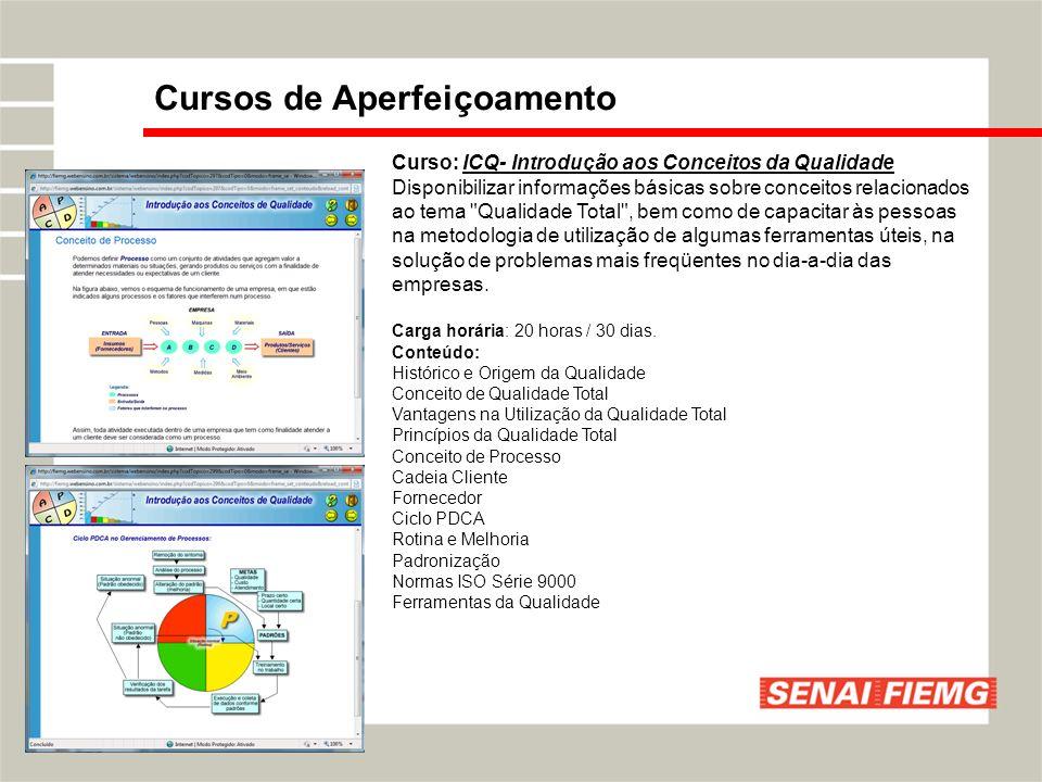 Curso: ICQ- Introdução aos Conceitos da Qualidade Disponibilizar informações básicas sobre conceitos relacionados ao tema