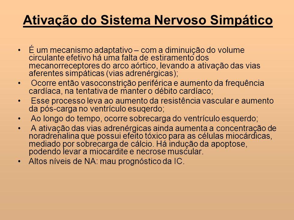 Ativação do Sistema Nervoso Simpático É um mecanismo adaptativo – com a diminuição do volume circulante efetivo há uma falta de estiramento dos mecano