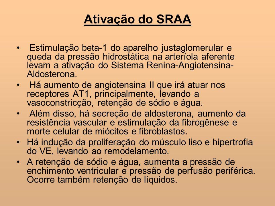Ativação do SRAA Estimulação beta-1 do aparelho justaglomerular e queda da pressão hidrostática na arteríola aferente levam a ativação do Sistema Reni