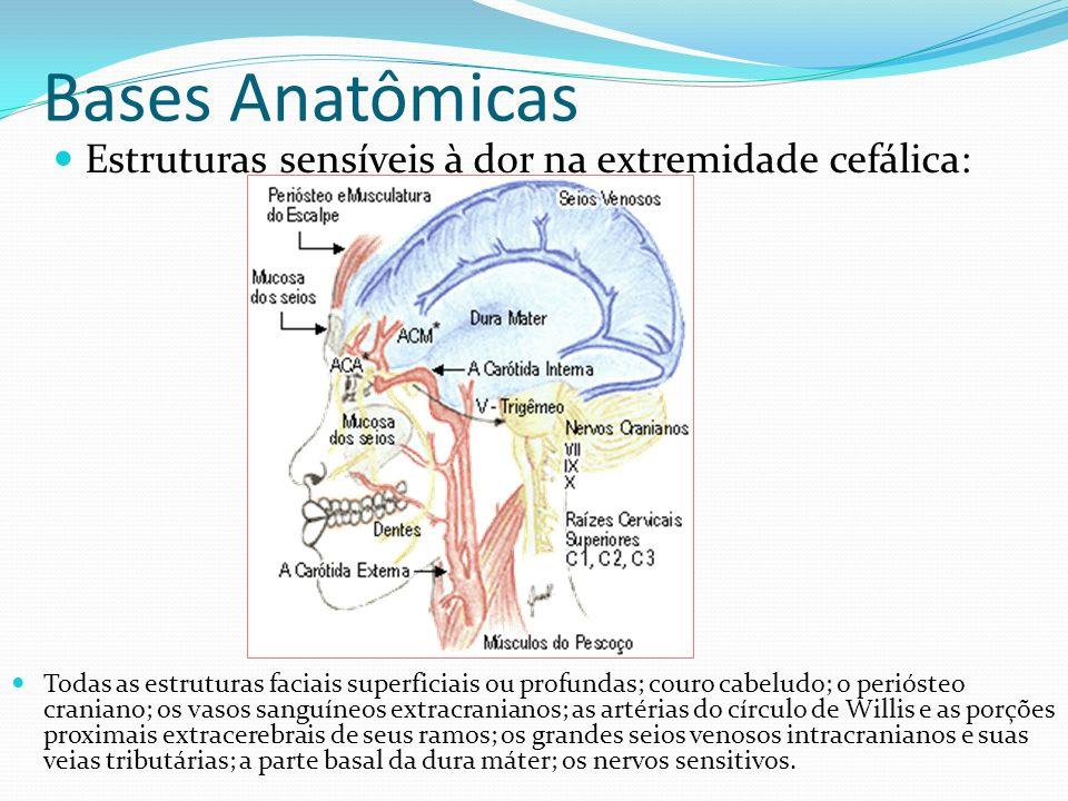 Bases Anatômicas Estruturas sensíveis à dor na extremidade cefálica: Todas as estruturas faciais superficiais ou profundas; couro cabeludo; o perióste